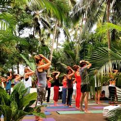 ashiyana-yoga-resort (3)