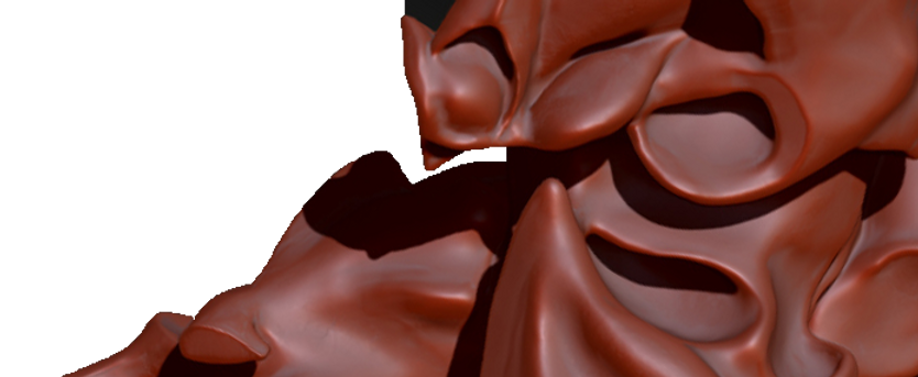 Muscles_base__02.png