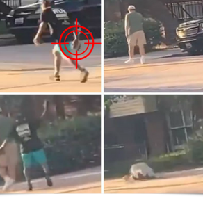 VIDEO: Elderly White Man Stalked, Bashed In Head From Behind By BLM Member.