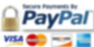 secure_payment_by_paypal.jpg