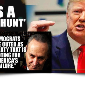 WATCH: Voters are 'fed up' with 'continual media witch hunts' against President Trump. #Trump2020