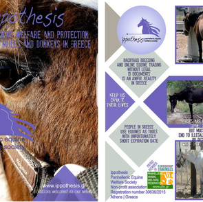 """Promo flyer for Ippothesis, used in 2018 """"Eurogroup for Animals"""" @ Brussels"""