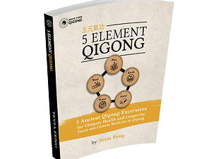 5-element-qIgong-3d.jpg
