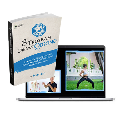 8 Trigram Organ Qigong Online Course and E-Book Bundle