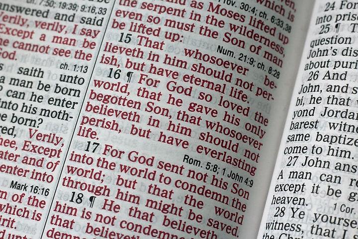 bible photo.jpg