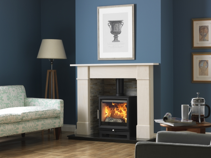 Surrey Burners Wood Burning Stoves Stove Shop And