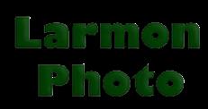 Larmon copy.png