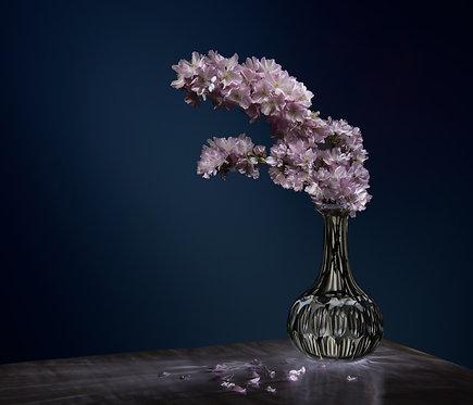 Dark Violet  - PHOTOPORTRAYAL - FMB Art Gallery