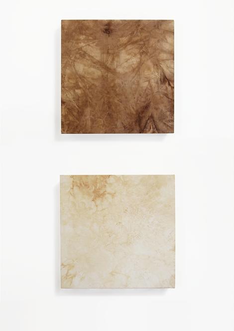 Sindoni vegetali. Dittico a Marsia - Gaia Bellini - FMB Art Gallery