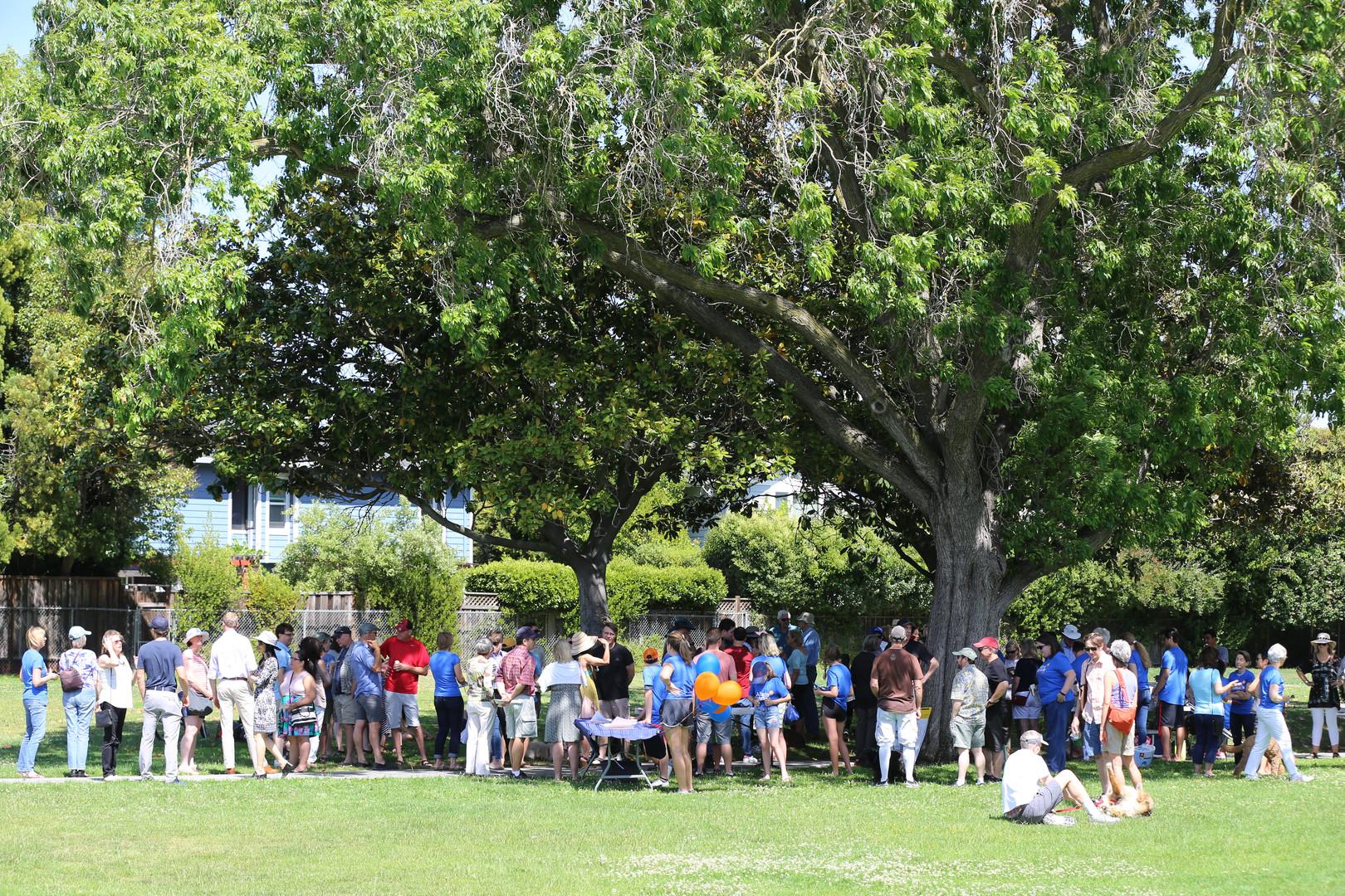 Campaign Kick Off for Alison Cormack for Palo Alto City Council