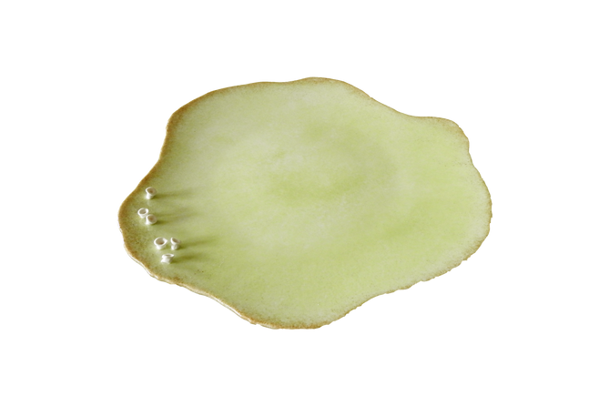 PLATE COTE.png