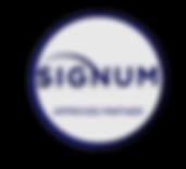 Approved partner network logo.png