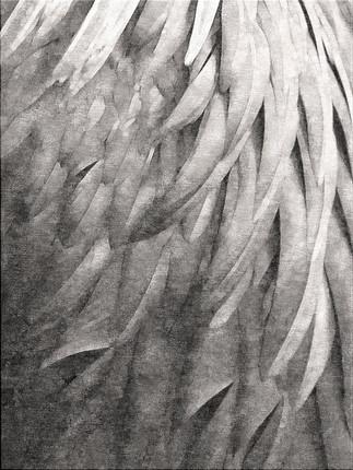 Divine Plumage in Sepia