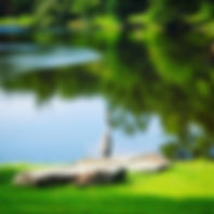 gorgeous lake picture.jpg