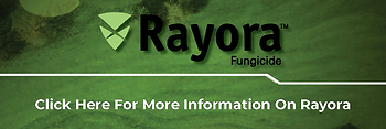 Small Rayora Info Link Banner.png