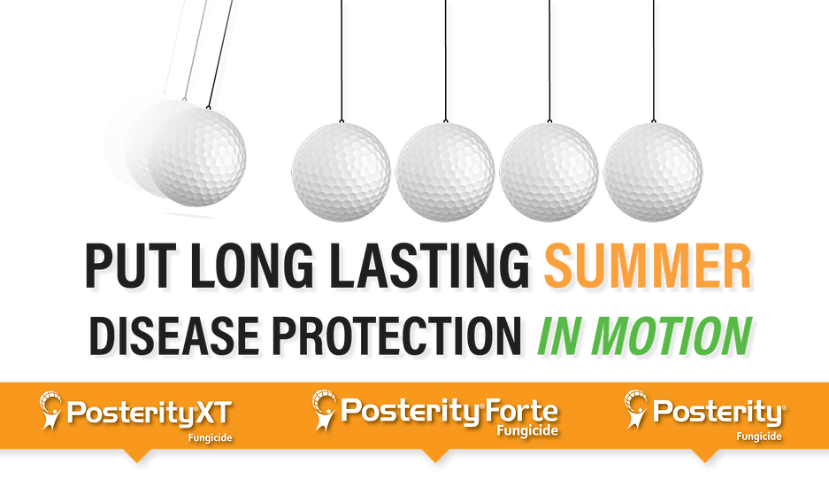 Clesens Posterity Summer Protection Bann