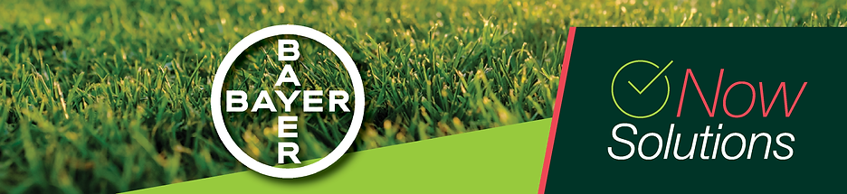 Bayer NOW Webpage Banner.png
