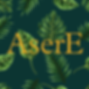 AserE Logo.png
