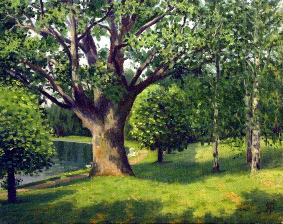 Старый дуб/Old Oak