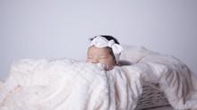Newborn Studio Photoshoot