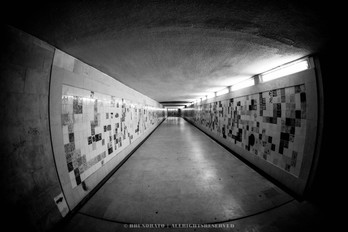 1st test in color & greyscale of SIGMA 15mm 2.8 fisheye ex