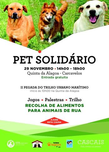 PET SOLIDÁRIO