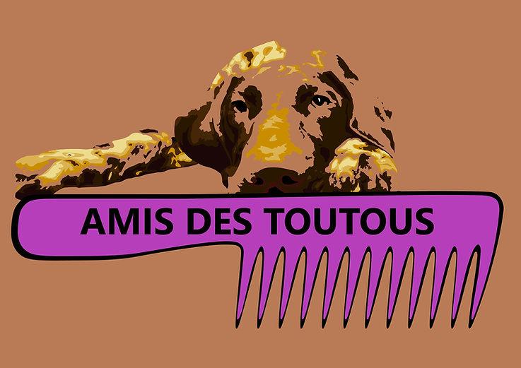 AMISDESTOUTOUS-logo vecto 202006-HD.jpg