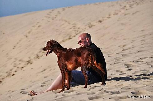 comportementaliste , educateur , canin , canicross, champion, harnais, alsace, bas rhin, positif, professionnel, dressage, meilleure , bien être , panier , chien