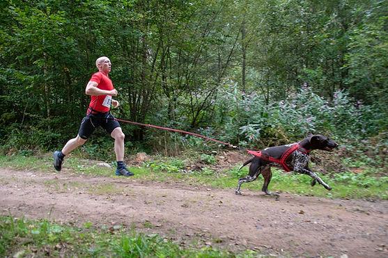 sport canin , canicross , vtt , trotinnette , ski , skijoering, bien être chien, alsace , bas rhin , obernai, zellwiller, champion , positif , sellerie , chien , sport