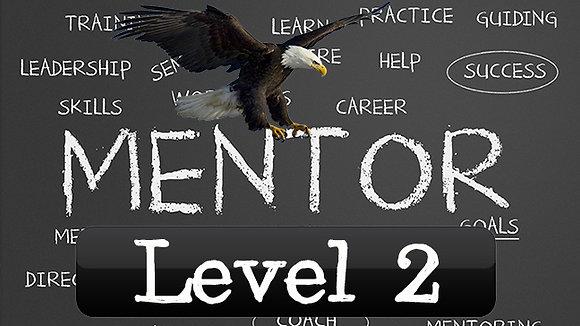 Eagle Mentorship Level 2