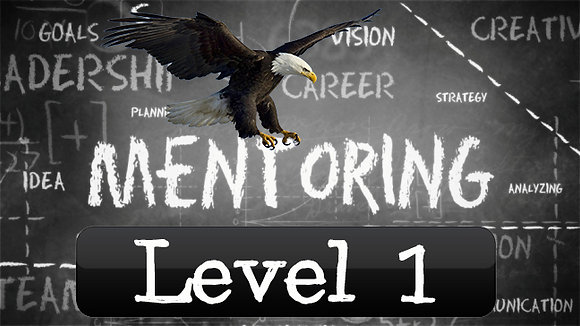 Eagle Mentorship Level 1