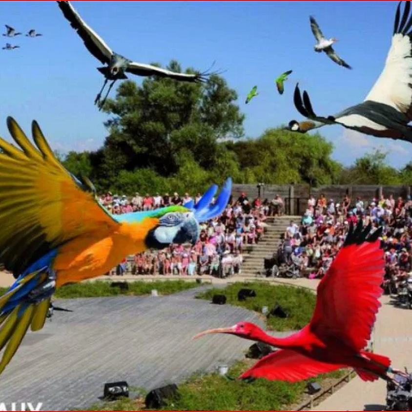 Parc des Oiseaux Villards-les-Dombes