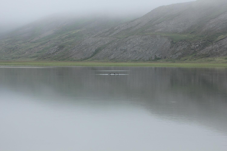 Hvalvatnsfjörður