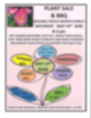 HS-Plants -2.jpg