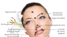 Guia Completo de Estética Facial                              ( Harmonia da Face)