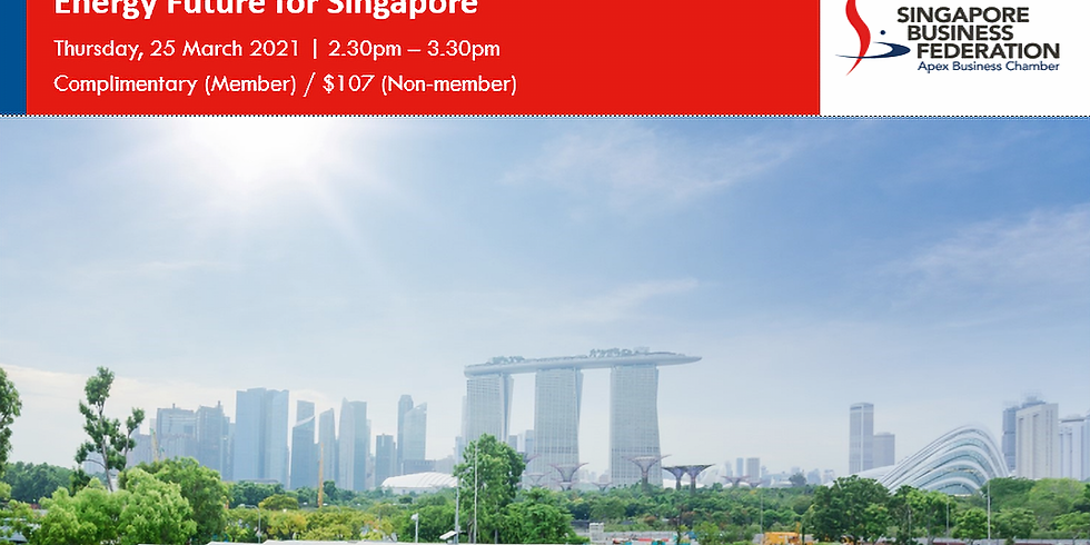Enabling A Low Carbon, Smart Energy Future for Singapore