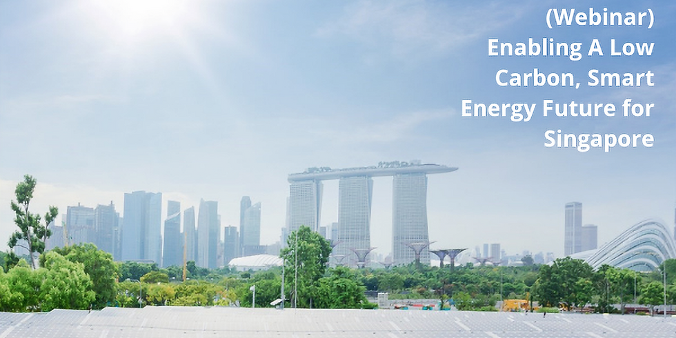 Low Carbon, Smart Energy Future for Singapore