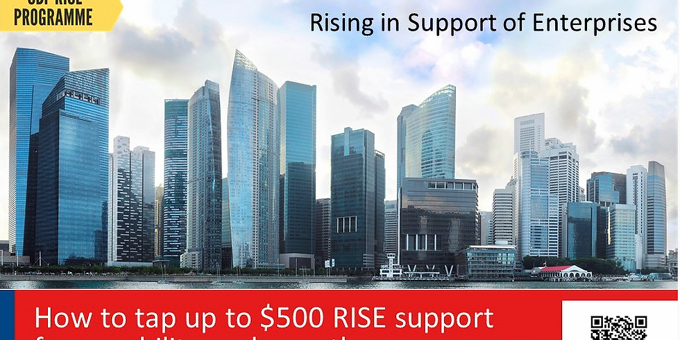 How to Tap up to $500 RISE Support for Capability & Growth