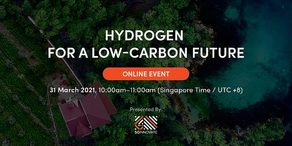 Hydrogen For a Low-Carbon Future