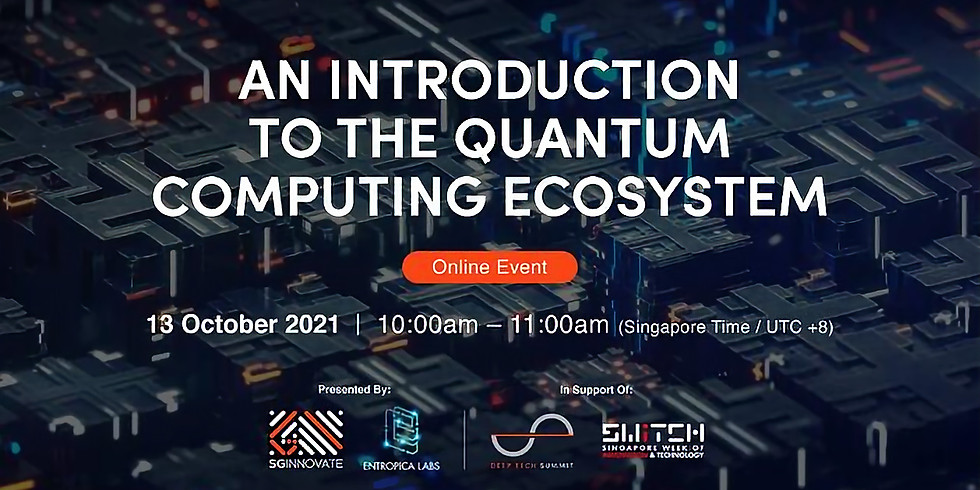 An Introduction to the Quantum Computing Ecosystem
