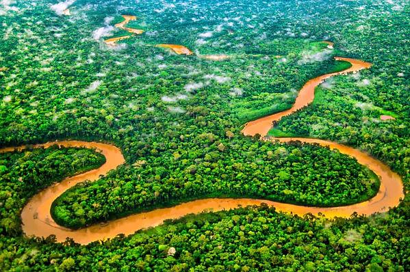 tambopata-rainforest-web.jpg