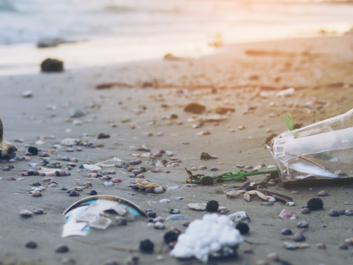 Plastic Beauty: The Cosmetic Industry's Environmental Impact