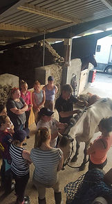Pony Clubbers getting a talk/demo with Phillip Smyth