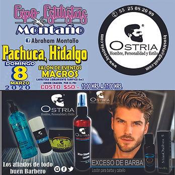 expo_pachuca_montaño.jpg