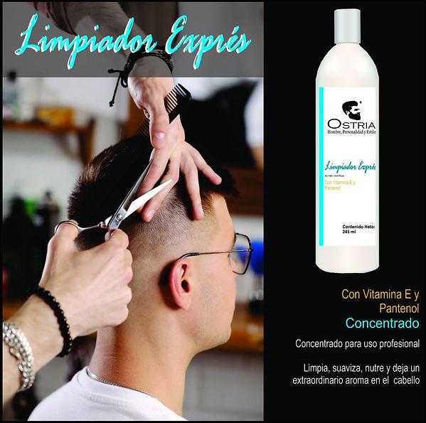 LIMPIADOR_EXPRÉS.jpg