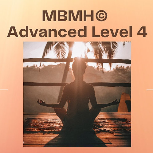 MBMH© Advanced Level 4 - 2 Classes pass.