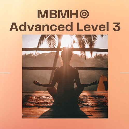 MBMH© Advanced Level 3 - 2 Classes pass.