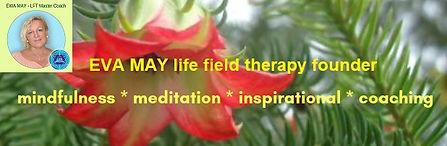 Eva May baner inspiracje.jpg