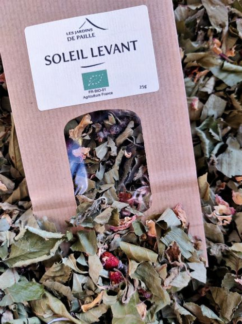 Infusion Soleil levant