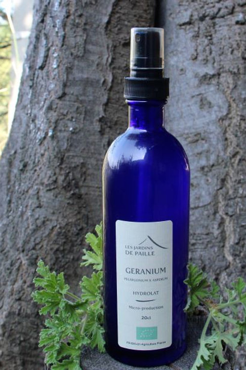 Géranium rosat - eau florale